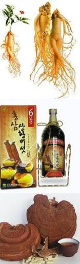 Sâm, Nấm linh chi (Hàn Quốc)